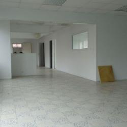 Location Local commercial Aucamville 220 m²