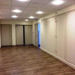 Location Bureau Lyon 9ème 214,42 m²