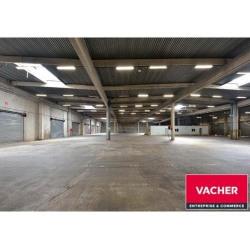 Location Local d'activités Bruges 1296 m²