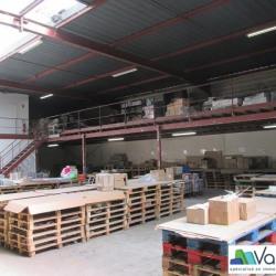 Location Local d'activités Collégien 1448 m²