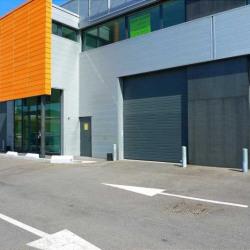 Location Local d'activités Montlhéry (91310)