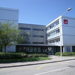 Location Bureau Annecy 230 m²