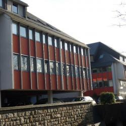 Location Bureau Rennes 266 m²