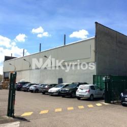 Vente Local d'activités Vaulx-en-Velin (69120)