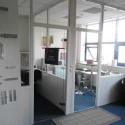 Location Local d'activités Croissy-Beaubourg 454,82 m²