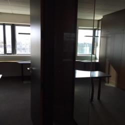 Location Bureau Lyon 7ème 416 m²