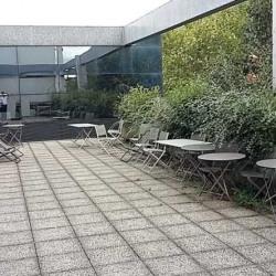 Location Bureau La Plaine Saint Denis 350 m²
