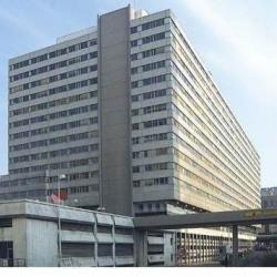 Location Bureau Lyon 3ème 386 m²
