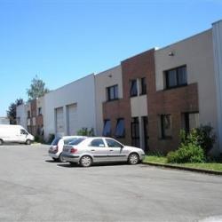 Vente Local d'activités Noisiel 326 m²