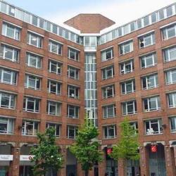 Location Bureau Villeneuve-d'Ascq (59650)
