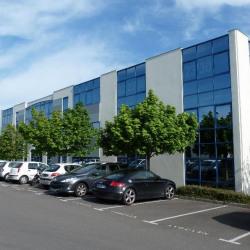Vente Bureau Saint-Grégoire 283 m²