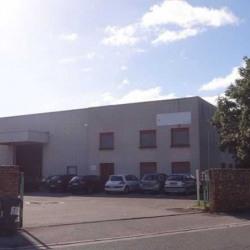 Vente Local d'activités Vénissieux 1177 m²