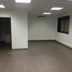 Location Local d'activités Dagneux 258 m²