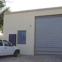 Location Local d'activités Le Crès 300 m²