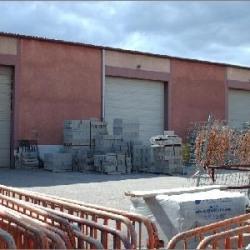 Location Local d'activités Craponne (69290)