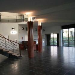 Vente Local d'activités Saint-Jean 2219 m²