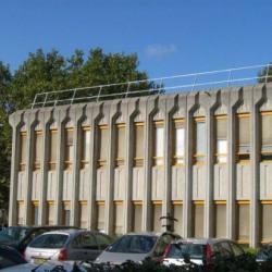 Location Bureau Lyon 7ème 522 m²