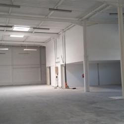 Location Local commercial Coulommiers 1311 m²