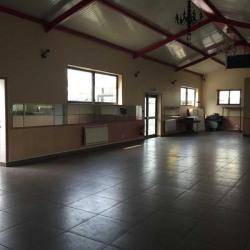 Location Local d'activités Noisy-le-Sec 2610 m²