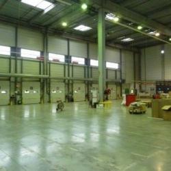 Location Local d'activités Cestas 5987 m²