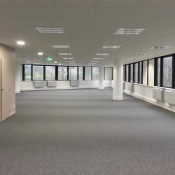 Location Bureau Rosny-sous-Bois 451 m²
