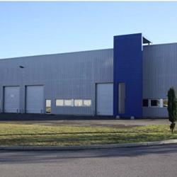 Location Local d'activités Blanquefort 163 m²