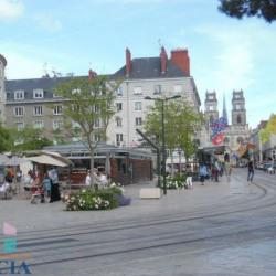 Vente Local commercial Orléans 0 m²