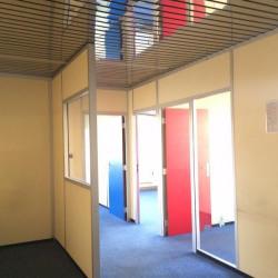 Location Local d'activités Saint-Maurice 416 m²