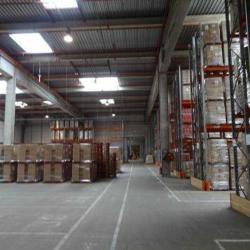 Location Entrepôt Ormes 12944 m²