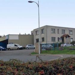 Vente Local d'activités Saint-Martin-au-Laërt 1128 m²