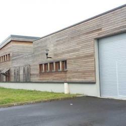 Location Local d'activités Carrières-sous-Poissy 320 m²