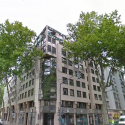 Location Bureau Lyon 3ème 217 m²