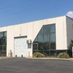 Location Bureau Castelnau-le-Lez 379 m²