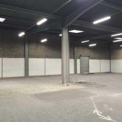 Location Entrepôt Rosny-sous-Bois 2900 m²