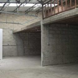 Location Local d'activités Villeneuve-le-Roi 233 m²