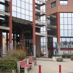 Vente Bureau Schiltigheim (67300)