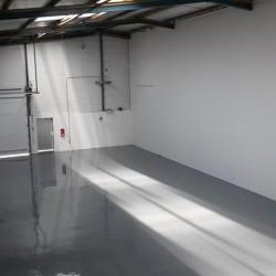 Location Entrepôt Villeurbanne 285 m²