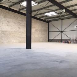 Vente Local d'activités Bailly-Romainvilliers 495 m²
