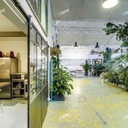 Vente Bureau Cachan 532 m²