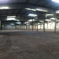 Vente Entrepôt Bazoches-sur-Guyonne 6800 m²