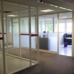 Location Bureau Blagnac 146 m²