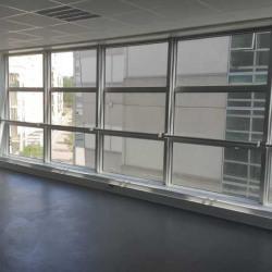Location Bureau Guyancourt 43 m²