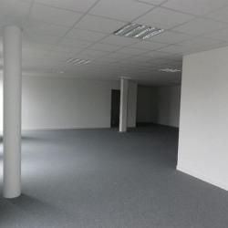 Vente Bureau Guipavas (29490)