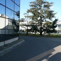 Location Entrepôt Saint-Priest 528 m²