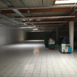 Location Local commercial Tournan-en-Brie 1100 m²