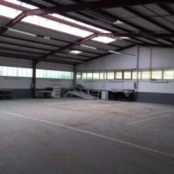 Location Local d'activités Haguenau 660 m²