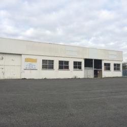 Location Local d'activités L'Isle-d'Espagnac 853 m²