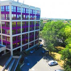 Vente Bureau Toulouse 468 m²