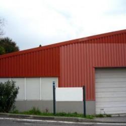 Location Local d'activités Marseille 15ème (13015)
