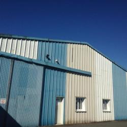 Vente Local d'activités Cesson-Sévigné 750 m²